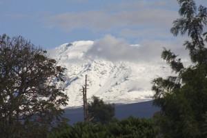lots of snow on kili